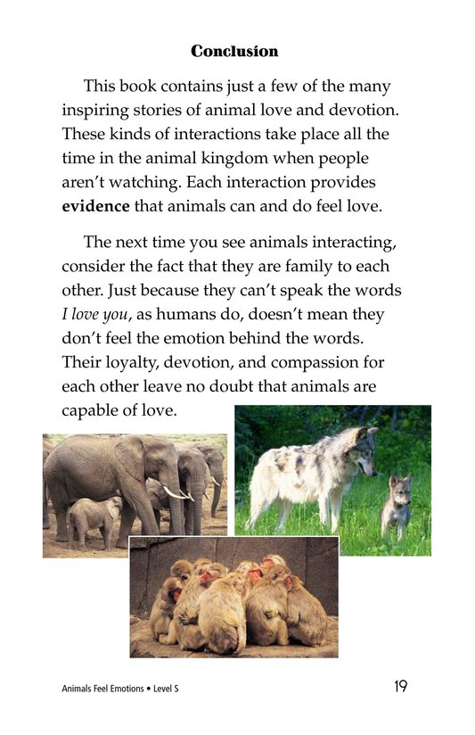 Book Preview For Animals Feel Emotions Page 19