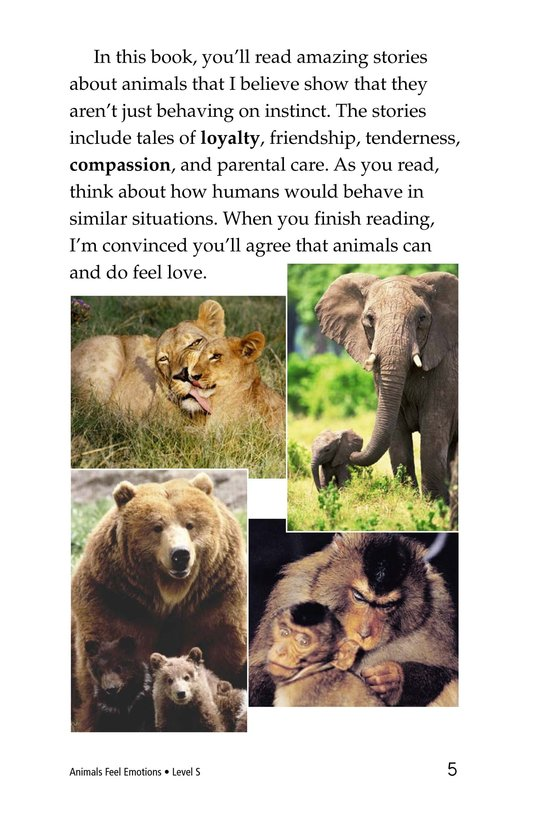 Book Preview For Animals Feel Emotions Page 5