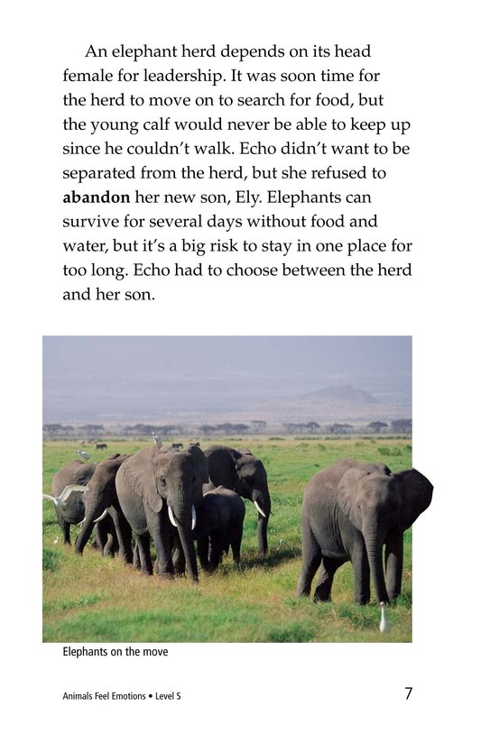 Book Preview For Animals Feel Emotions Page 7