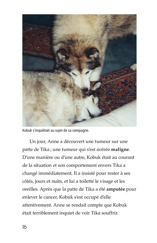 Book Preview For Animals Feel Emotions Page 16