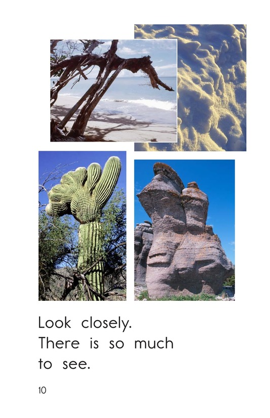 Book Preview For What Do You See? Page 10