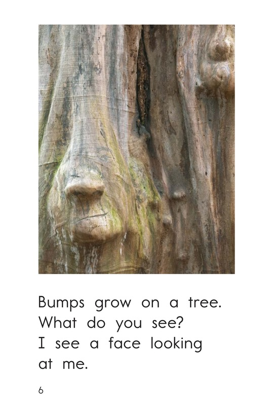 Book Preview For What Do You See? Page 6