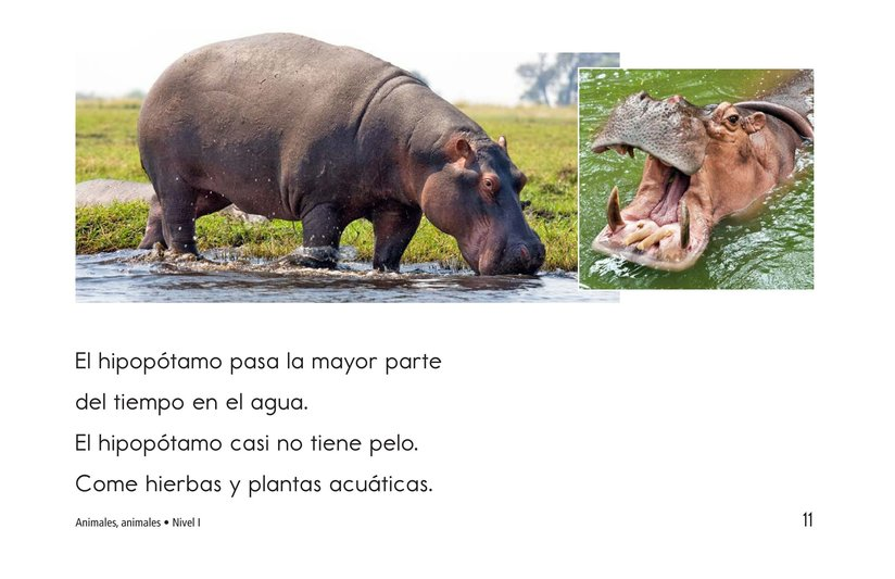 Book Preview For Animals, Animals Page 11
