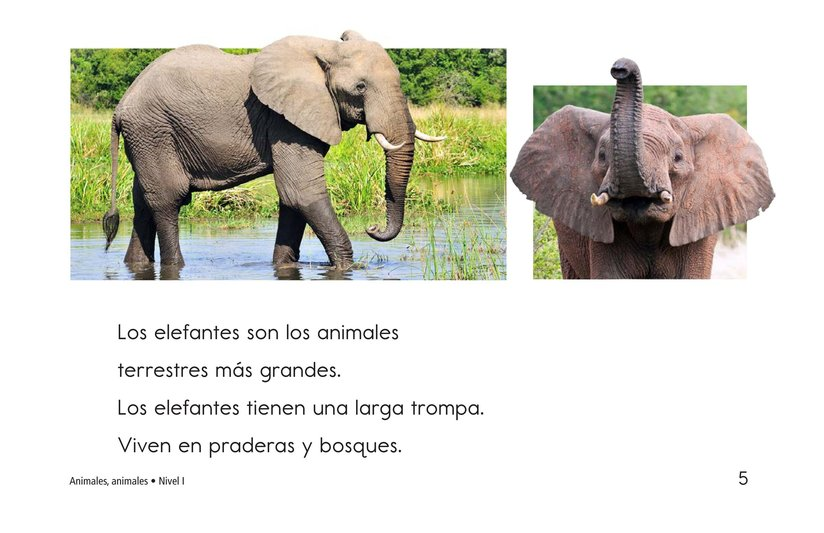 Book Preview For Animals, Animals Page 5