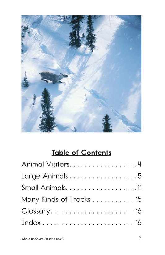 Book Preview For Whose Tracks Are These? Page 3