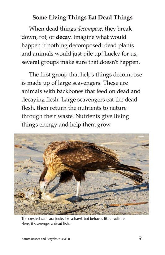 Book Preview For Nature Reuses and Recycles Page 9