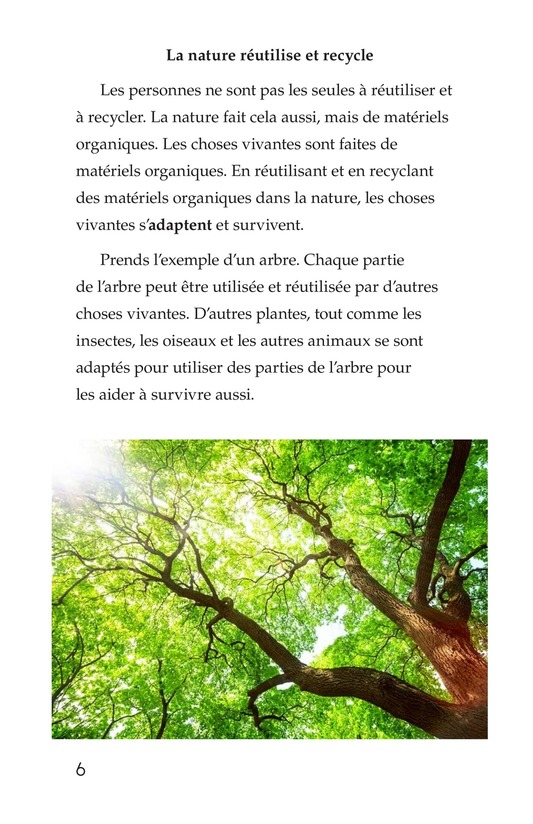 Book Preview For Nature Reuses and Recycles Page 6