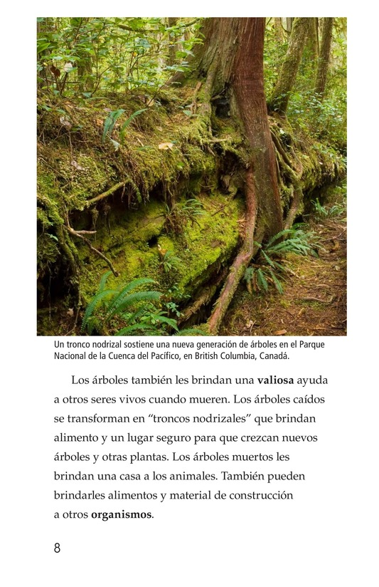 Book Preview For Nature Reuses and Recycles Page 8