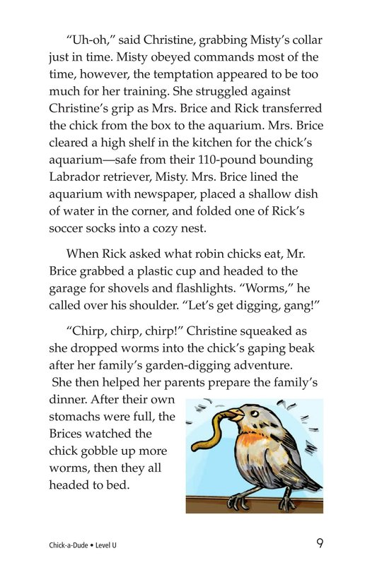 Book Preview For Chick-a-Dude Page 9
