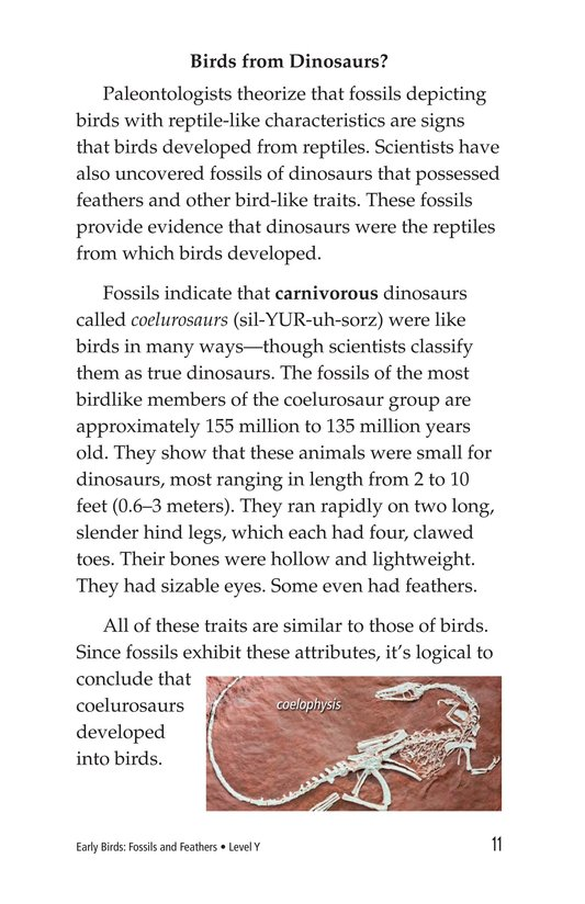 Book Preview For Early Birds: Fossils and Feathers Page 11