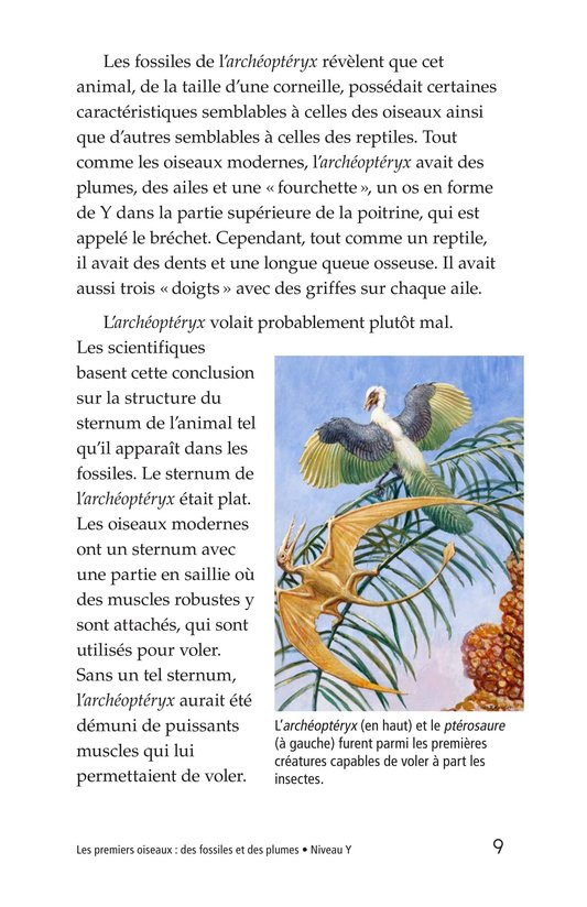 Book Preview For Early Birds: Fossils and Feathers Page 9