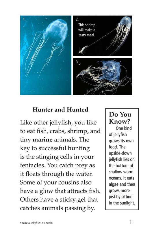 Book Preview For You're a Jellyfish! Page 11