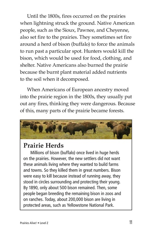 Book Preview For Prairies Alive! Page 11
