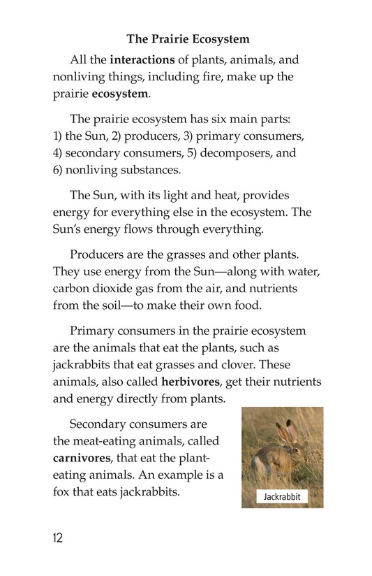 Book Preview For Prairies Alive! Page 12