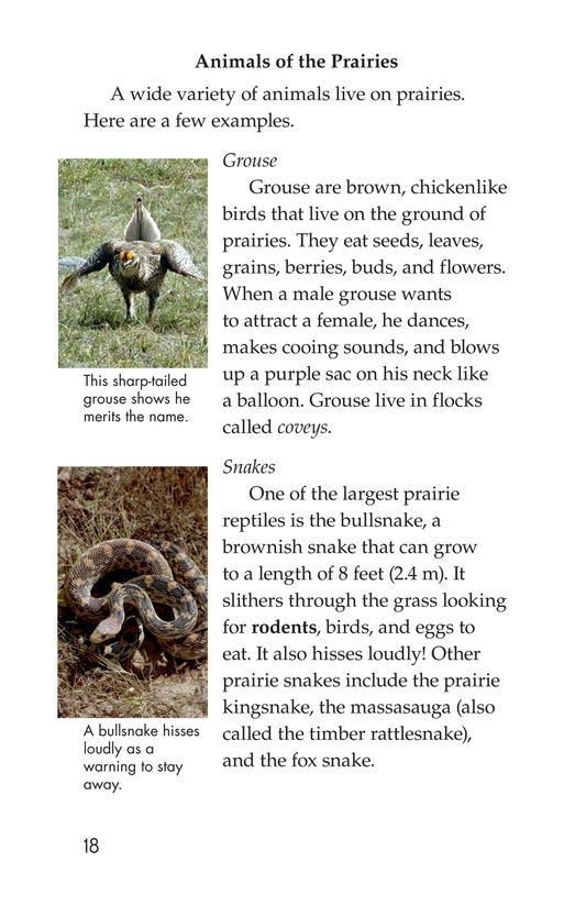 Book Preview For Prairies Alive! Page 18