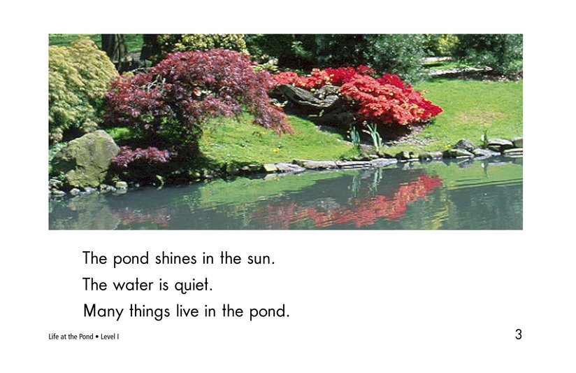 Book Preview For Life at the Pond Page 3