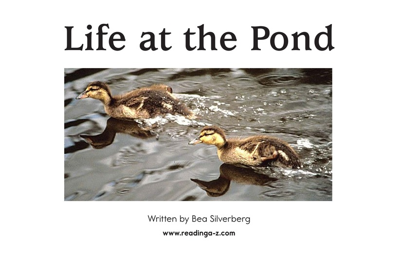 Book Preview For Life at the Pond Page 2