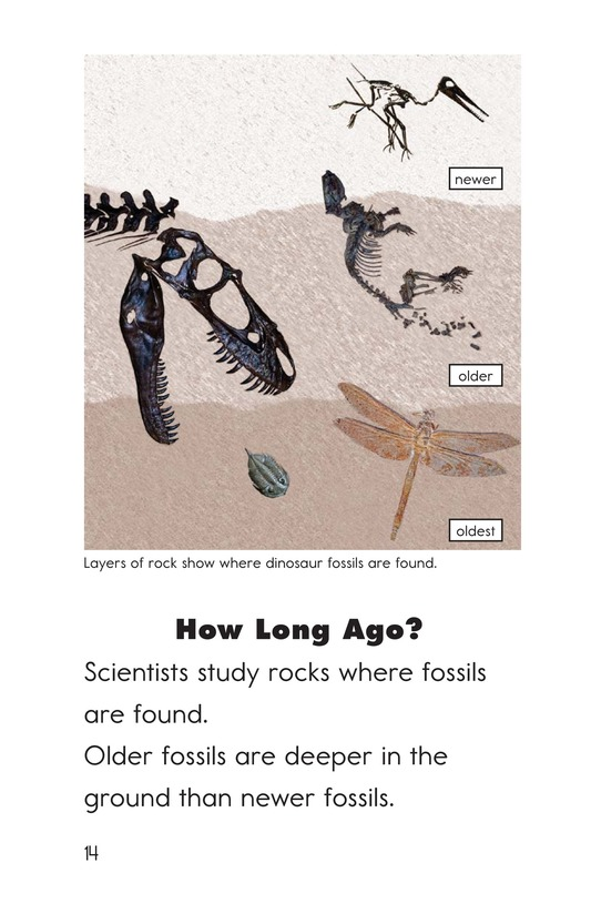 Book Preview For Discovering Dinosaurs Page 14
