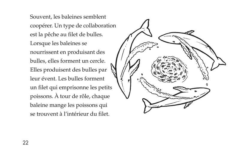 Book Preview For Whales Page 22