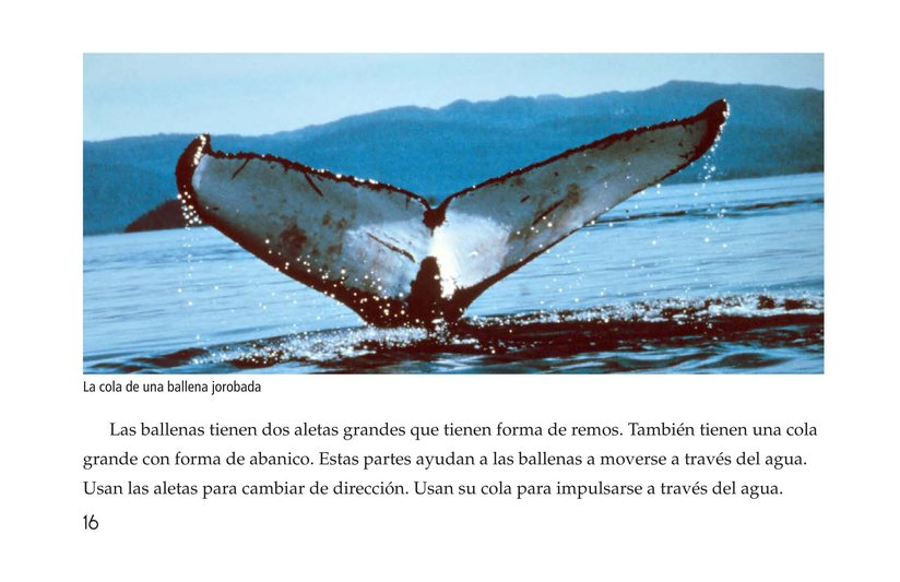 Book Preview For Whales Page 16
