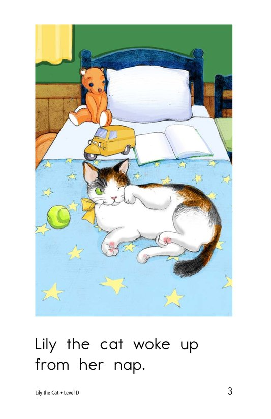 Book Preview For Lily the Cat Page 3