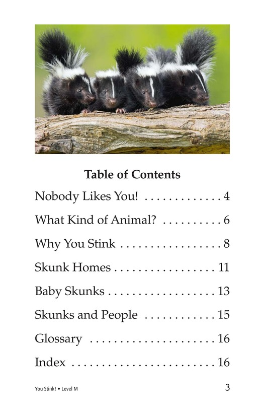 Book Preview For You Stink! Page 3