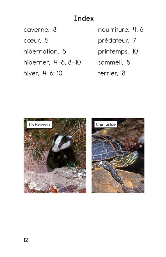 Book Preview For Hibernation Page 12