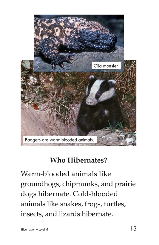 Book Preview For Hibernation Page 13