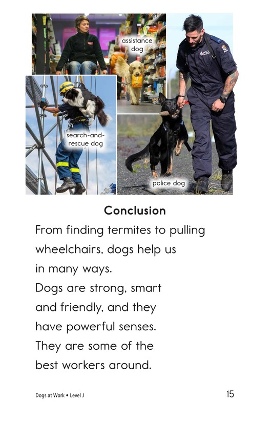 Book Preview For Dogs at Work Page 15