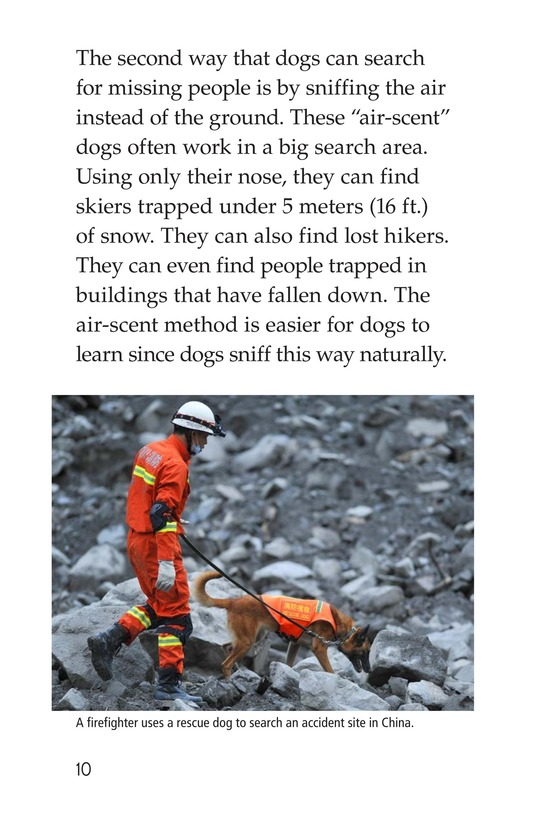 Book Preview For Dogs at Work Page 10