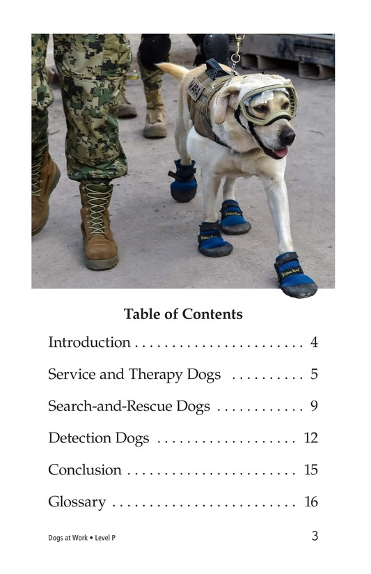 Book Preview For Dogs at Work Page 3