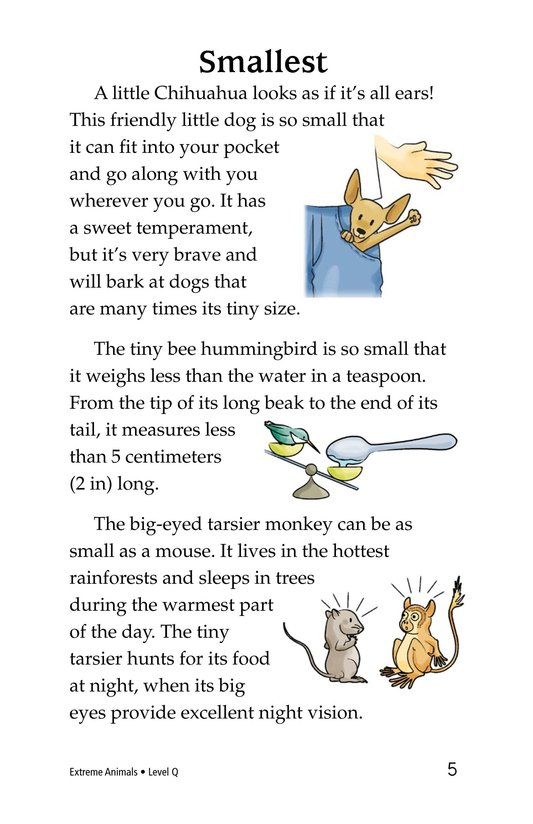 Book Preview For Extreme Animals Page 5