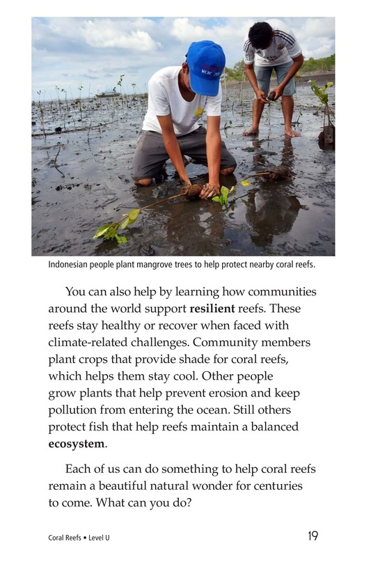 Book Preview For Coral Reefs Page 19