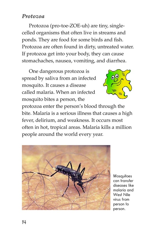 Book Preview For Microbes: Friend or Foe? Page 14