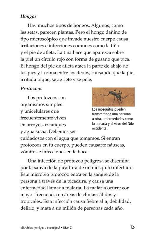 Book Preview For Microbes: Friend or Foe? Page 13