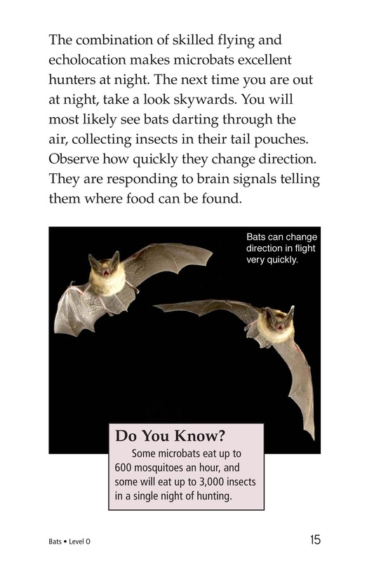 Book Preview For Bats Page 15
