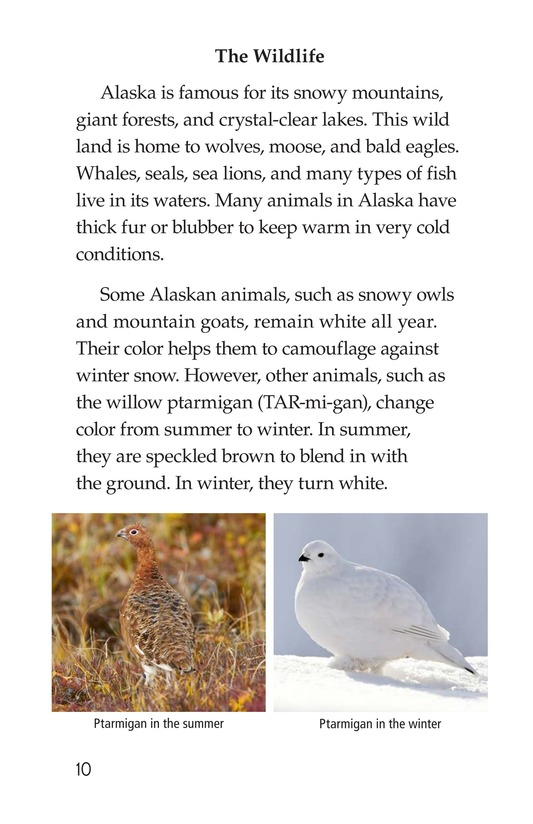 Book Preview For Alaska: The Last Frontier Page 10