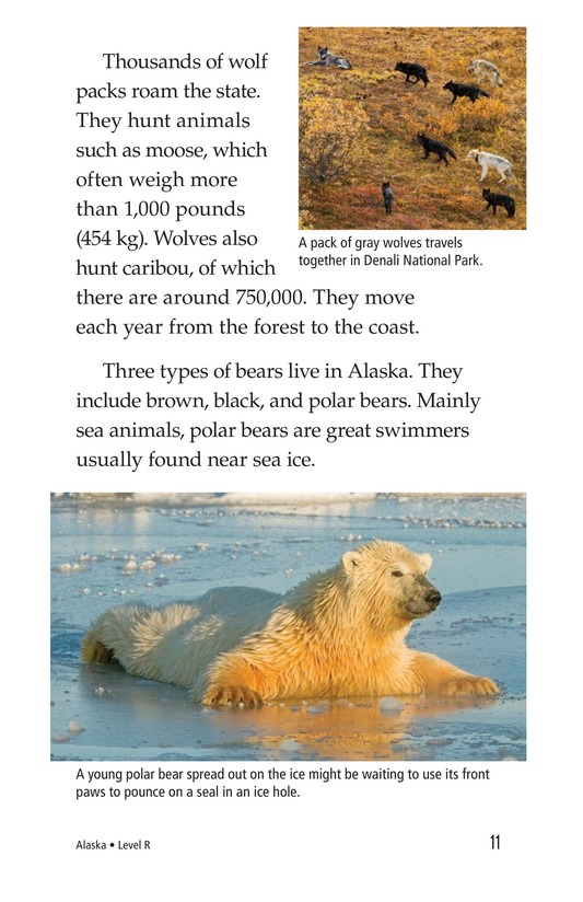 Book Preview For Alaska: The Last Frontier Page 11