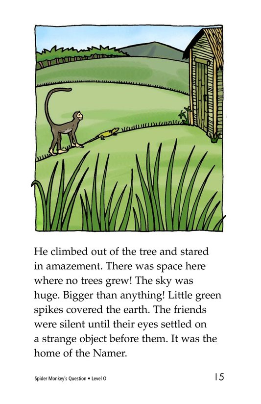 Book Preview For Spider Monkey's Question Page 15