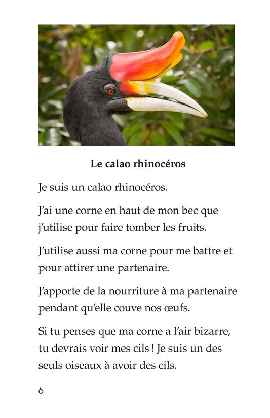 Book Preview For Weird Bird Beaks Page 6