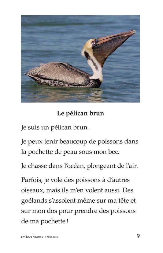 Book Preview For Weird Bird Beaks Page 9