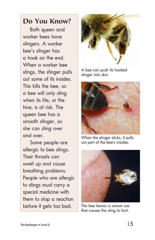 Book Preview For The Beekeeper Page 15
