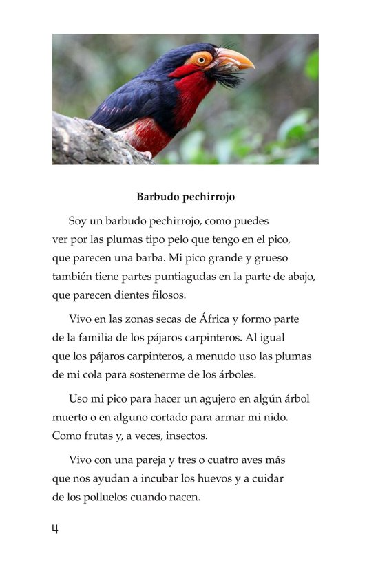 Book Preview For Weird Bird Beaks Page 4