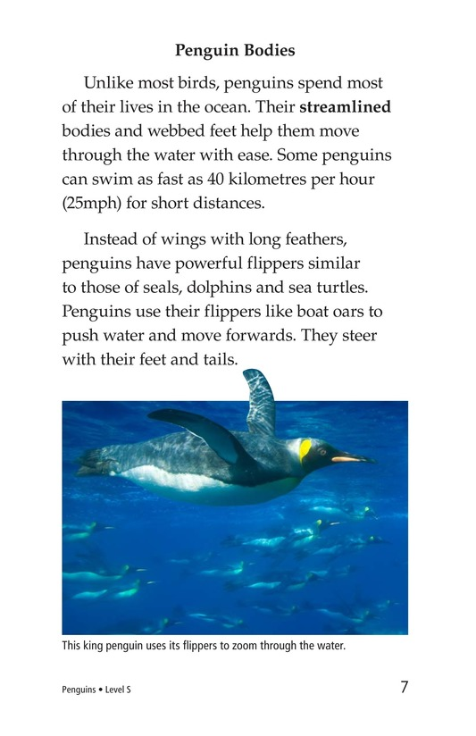 Book Preview For Penguins Page 7