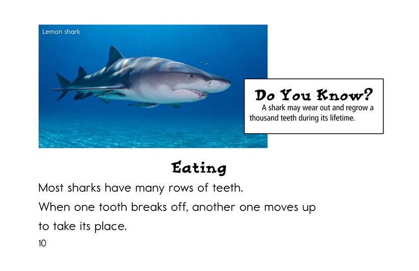 Book Preview For Sharks Page 10