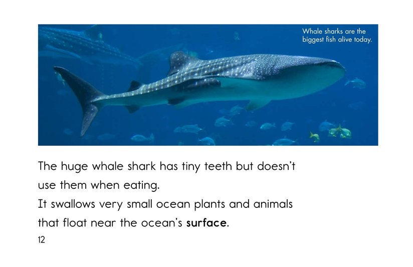 Book Preview For Sharks Page 12