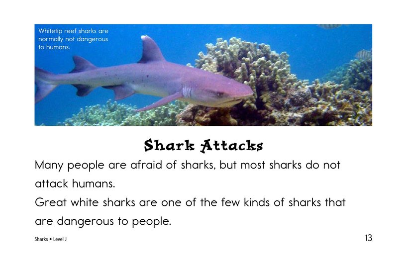 Book Preview For Sharks Page 13
