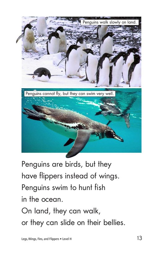 Book Preview For Legs, Wings, Fins, and Flippers Page 13