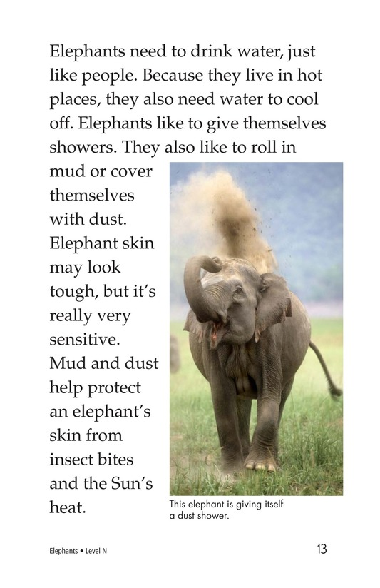 Book Preview For Elephants Page 13