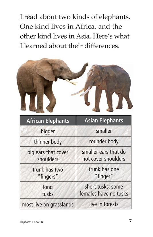 Book Preview For Elephants Page 7